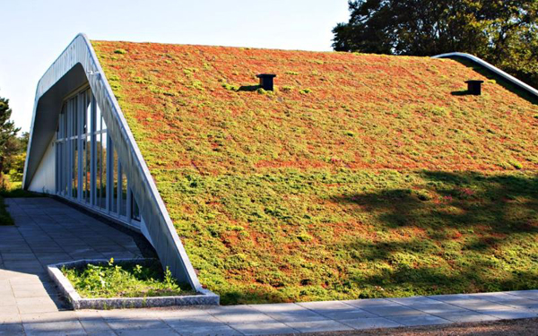 The Hill House Brings An Extreme Green Roof To Residential