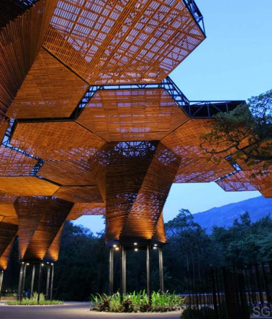 A Woven Wooden Canopy Covers A Botanical Garden In