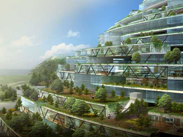 Sustainable vertical cities Essay