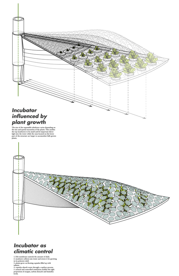 inkubatory do uprawy pionowej warzyw